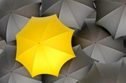 Желтый зонтик среди черных